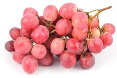 Ciérrese encima de la fruta de la uva Fotografía de archivo