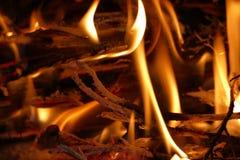 Ciérrese encima de la leña ardiente en chimenea Fotos de archivo libres de regalías