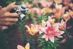 Ciérrese encima de la mano del ` s de la mujer con las flores del tiroteo del foco de la cámara del vintage Imágenes de archivo libres de regalías