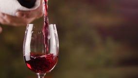 Ciérrese encima de la mano masculina que vierte el vino rojo en vidrio de la cámara lenta de la botella almacen de video