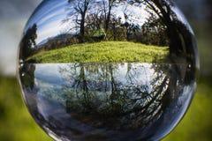 Ciérrese encima de la opinión sobre árboles hermosos del paisaje en cielo azul y prado verde a través de la esfera de la bola de  Imagen de archivo