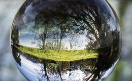 Ciérrese encima de la opinión sobre árboles hermosos del paisaje en cielo azul y prado verde a través de la esfera de la bola de  Imagenes de archivo