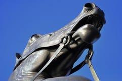 Ciérrese encima de la opinión sobre la cabeza de caballo en el caballo Tamers de la escultura Fotos de archivo libres de regalías