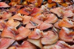 Ciérrese encima de la sequedad salada de los pescados del Osphromemus gorami de la piel de serpiente Fotografía de archivo libre de regalías