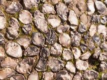 Ciérrese encima de la textura del fondo del special del pavimento de la piedra del adoquín uni Imagen de archivo