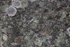 Ciérrese encima de la vista de la piedra Imagen de archivo