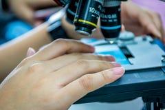 Ciérrese encima de la vista de las manos del científico con una diapositiva de la muestra en th Fotografía de archivo