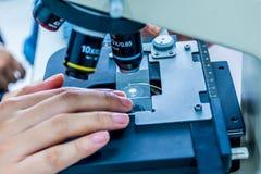 Ciérrese encima de la vista de las manos del científico con una diapositiva de la muestra en th Foto de archivo libre de regalías