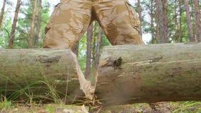 Ciérrese encima de la vista del hacha en el árbol grande, leñador borroso en camisa de tela escocesa en fondo almacen de metraje de vídeo