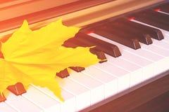 Ciérrese encima de la vista de la hoja del amarillo del otoño en llaves del piano Foto de archivo libre de regalías