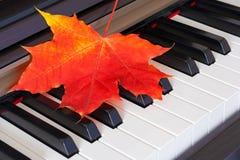 Ciérrese encima de la vista de la hoja roja del otoño en llaves del piano Foto de archivo libre de regalías