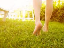 Ciérrese encima de las piernas femeninas que caminan en la hierba Foto de archivo
