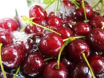 Ciérrese encima de lavar cerezas maduras frescas Imagen de archivo libre de regalías