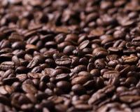 Ciérrese encima de los granos de café Imagen de archivo libre de regalías