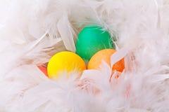 Huevos de Pascua coloridos en la pluma blanca Foto de archivo libre de regalías