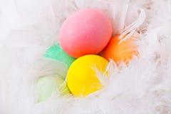 Huevos de Pascua coloridos en la pluma blanca Foto de archivo