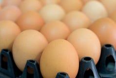 Ciérrese encima de los huevos frescos del pollo en el paquete fotografía de archivo libre de regalías