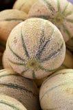 Ciérrese encima de los melones frescos del cantalupo en la exhibición al por menor fotografía de archivo libre de regalías