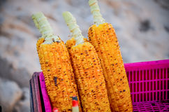 Ciérrese encima de maíz asado a la parrilla en la cesta Foto de archivo libre de regalías