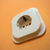 Ciérrese encima de macro del enchufe europeo de la toma de corriente de la electricidad Fotografía de archivo