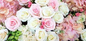 Ciérrese encima de mucha rosa rosada, roja, amarilla y blanca hermosa para el fondo fotos de archivo