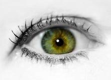 Ciérrese encima de ojo Fotografía de archivo