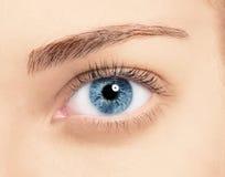 Ciérrese encima de ojo azul con maquillaje Imagen de archivo libre de regalías