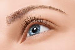 Ciérrese encima de ojo azul con maquillaje Imágenes de archivo libres de regalías