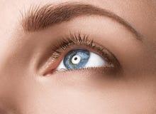Ciérrese encima de ojo azul con maquillaje Fotografía de archivo libre de regalías