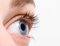 Ciérrese encima de ojo azul con maquillaje Fotos de archivo libres de regalías