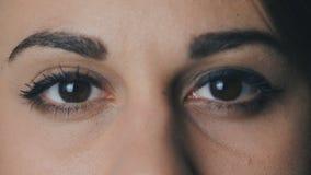 Ciérrese encima de ojos grandes del marrón del ` s de la mujer metrajes