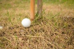 Ciérrese encima de pelota de golf sucia en mala tierra Imagen de archivo