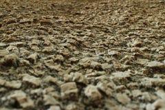 Ciérrese encima de perspectiva de la textura de la superficie de la roca ígnea (ángulo bajo Fotografía de archivo