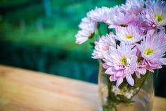 Ciérrese encima de ramo de las flores de Astra en el florero en la tabla Foto de archivo libre de regalías