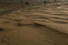 Ciérrese encima de textura de la arena del desierto Imágenes de archivo libres de regalías