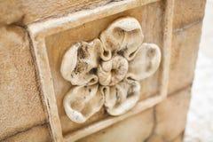 Ciérrese encima de textura de la flor de piedra con los pétalos del bulto del alivio de un yeso decorativo de una piedra con un m imágenes de archivo libres de regalías