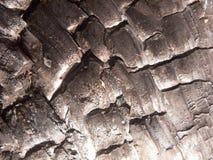 ciérrese encima de textura negra de agrietado brillante carbonizada quemada del carbón de leña del bosque del tocón de árbol imagen de archivo libre de regalías