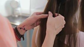 Ciérrese encima de tiro Peluquero profesional que hace el peinado para la mujer bonita joven metrajes