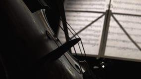 Ciérrese encima de tocar el violoncelo Vista lateral metrajes