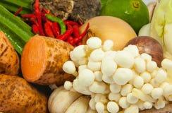Ciérrese encima de verduras Imágenes de archivo libres de regalías