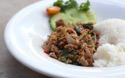 Ciérrese encima del arroz rematado con cerdo y albahaca picaditos sofritos foto de archivo libre de regalías