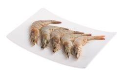 Ciérrese encima del camarón aislado en blanco Fotografía de archivo