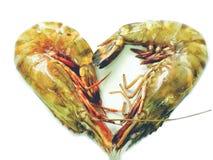 Ciérrese encima del camarón fresco del tigre para cocinar Fotografía de archivo libre de regalías