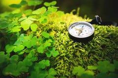 Ciérrese encima del compás de madera hecho a mano, sombras del árbol en la tierra verde de la hierba de la naturaleza aventura de Imagen de archivo libre de regalías