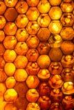 Ciérrese encima del estudio tirado de la miel orgánica Foto de archivo libre de regalías