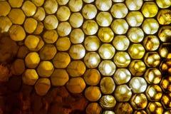 Ciérrese encima del estudio tirado de la miel orgánica Fotos de archivo libres de regalías
