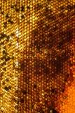 Ciérrese encima del estudio tirado de la miel orgánica Imagen de archivo libre de regalías