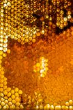 Ciérrese encima del estudio tirado de la miel orgánica Foto de archivo