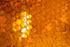 Ciérrese encima del estudio tirado de la miel orgánica Fotografía de archivo libre de regalías