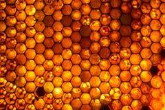 Ciérrese encima del estudio tirado de la miel orgánica Imagenes de archivo
